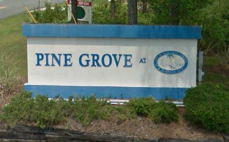pine grove